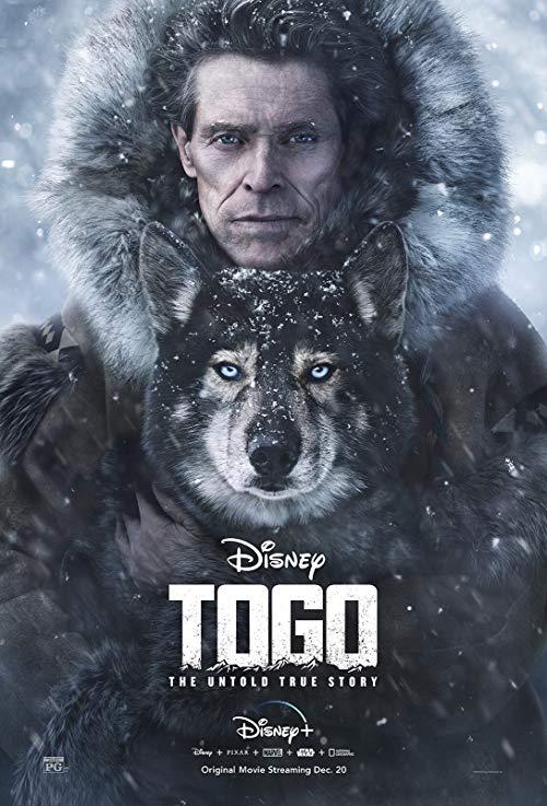 Togo (2019) PL.SUBBED.480p.WEBRip.XViD.AC3-MORS / Napisy PL